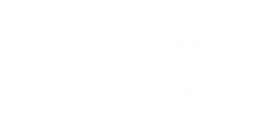 Logo Babor mit Link
