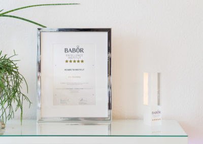 """Urkunde und Preis für die Auszeichnung als """"Babor Excellence Insitut"""""""